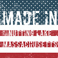 Made In Nutting Lake, Massachusetts by Tinto Designs