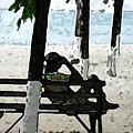 Man On Beach by Jim Wright