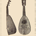Mandolin Musical Instrument by Sandra McGinley