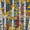 Manitoba Birch  by Lynn Huttinga