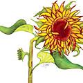 Mari's Sunflower by Stephanie  Jolley