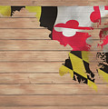 Maryland Rustic Map On Wood by Dan Sproul
