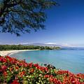 Mauna Kea Beach by Dana Edmunds - Printscapes