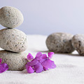 Meditation Stones Pink Flowers On White Sand by Michelle Himes