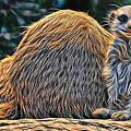 Meerkat by Marvin Blaine