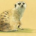 Meerkat Or Suricate Painting by Juan  Bosco