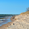 Michigan Beach by Linda Kerkau