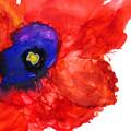 Midnight Bloom by Marilyn Johnson