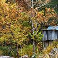 Mill In The Fall by Terri Morris