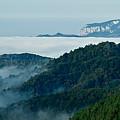 Mist Over Apuseni by Gabriela Insuratelu
