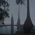 Misty Morning by Wayne Denmark