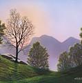 Misty Spring Meadow by Frank Wilson