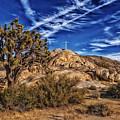 Mojave Memorial Cross And War Memorial by Mountain Dreams