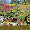 Momiji Gardens by Frank Townsley