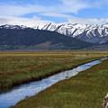 Mono County Nevada by Thomas Marchessault