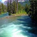Montana River by Eric Fellegy
