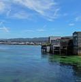 Monterey by Brian Stauffer
