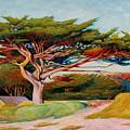 Monterey Cypress by Alexander Chernitsky