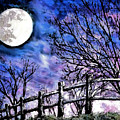 Moon O're Hocking Hills by Mary Sonya  Conti