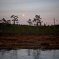 Moon Over Wetlands by Jouko Lehto