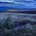 Moonlight On Stone Mountain Slope With Forest by Michael Pelin