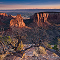 Morning At Colorado National Monument by Greg Nyquist