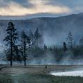 Morning by Carolyn Fox