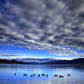 Morning Light On Okanagan Lake by Tara Turner