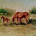 Morning Pasture by Joyce Jenner