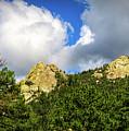 Mt. Lemmon by Elaine Malott