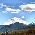 Mt Rainier Washington by Sadie Reneau