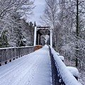 Munger Trail Bridge by Bryan Benson