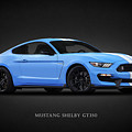 Mustang Shelby GT350 by Mark Rogan