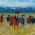 Mustangs In Southern Colorado by Frances Marino