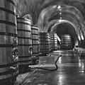 Napa Valley Wine Cellar by L O C
