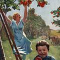 National Apple Week by Charles Dickson