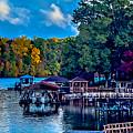 Nature Landscapes Around Lake Wylie South Carolina by Alex Grichenko