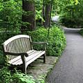 The Garden's Path by Trina Ansel