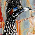 New Mexico Roadrunner by Barbara Chichester