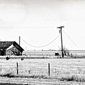 New Mexico Roadside by Lars Lentz