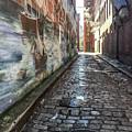Newburyport Alley by Susan Allen