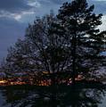 Night Lights by Skip Willits