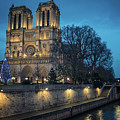 Notre Dame by James Billings