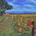 November Vineyard by Daniel Bosler