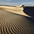 Oceano Dunes II by Sharon Foster