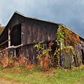 Ohio Barn In The Fall by Lorraine Baum