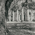 Old Sheldon Church Ruins by Dawna Moore Photography
