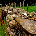 Old Stone Wall by Elizabeth Tillar