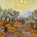 Olive Trees With Yellow Sky And Sun by Vincent van Gogh