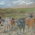 On The Chisholm Trail by Gail Daley